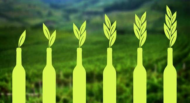 Vinhos Naturais, Orgânicos e Biodinâmicos? 3