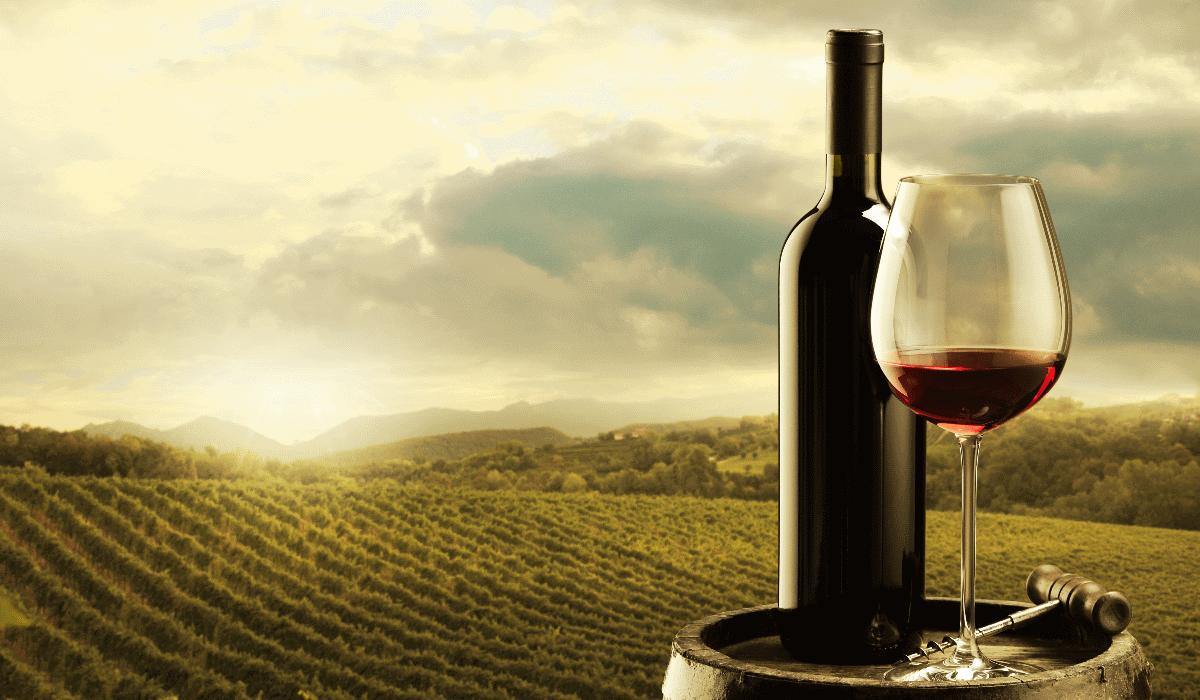 Rota dos Vinhos em Bento Gonçalves